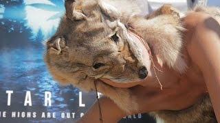 Nonton Star Leaf - Seattle Hempfest 2015 Film Subtitle Indonesia Streaming Movie Download