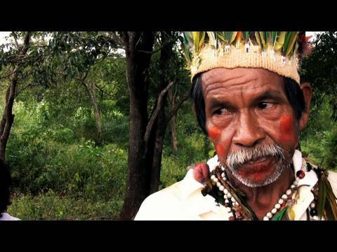 survivalintl - http://www.survivalinternational.org/guarani A Guarani community in Mato Grosso do Sul, Brazil describe the threat posed to them by gunmen, hired by the ranc...