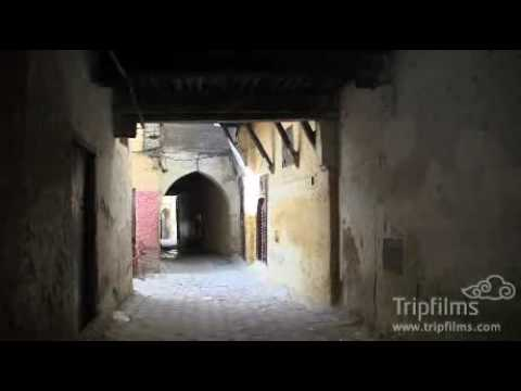 Video of Riad Felloussia