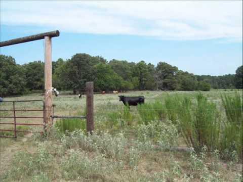 675.29 acres Spencerville, OK