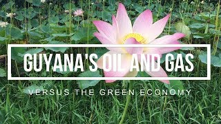 7. S4.E1 | Guyana's Oil and Gas VS The Green Economy