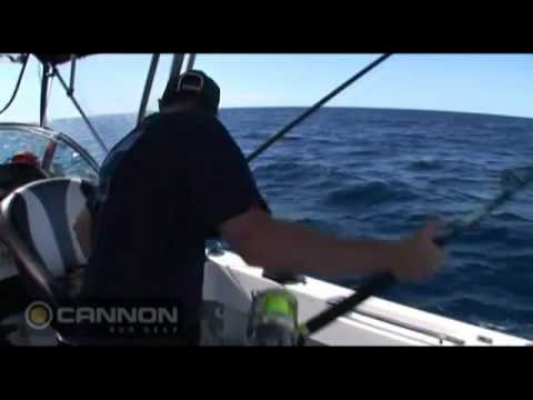 Cannon Downriggers LIve Baiting for Marlin