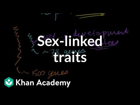 Sex Linked Traits Video Sex Linkage Khan Academy