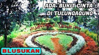 Video NYAWANGAN PARK, the Beautiful Park in Sendang Highlands (Tulungagung, East Java, Indonesia) MP3, 3GP, MP4, WEBM, AVI, FLV Desember 2018