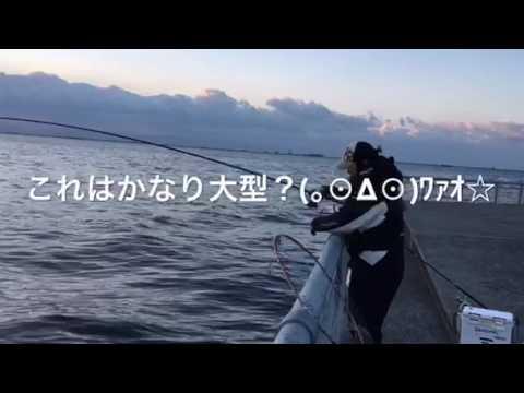 【目の前でBIGチヌ!!】南芦屋浜リアルタイム