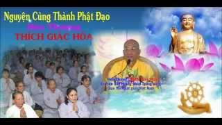 Bài Giảng: Nguyện Cùng Thành Phật Đạo - Hòa Thượng Thích Giác Hóa