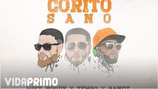 Download Lagu Tempo X Miky Woodz & Randy - Corito Sano Mp3