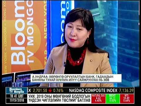 А.Ундраа: Монголбанк арилжааны банкны үйл ажиллагаа явуулж болохгүй