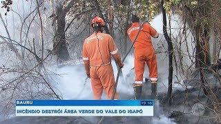 Bauru: incêndio destrói grande área verde no Vale do Igapó