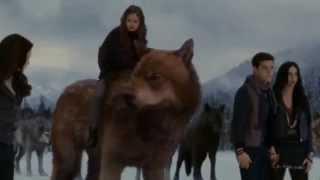 Nonton Breaking Dawn part 2  (The Battel) Cullen VS Volturi Film Subtitle Indonesia Streaming Movie Download
