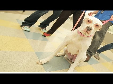 VIDEO: Uptown Pups Gonna Give It To You!