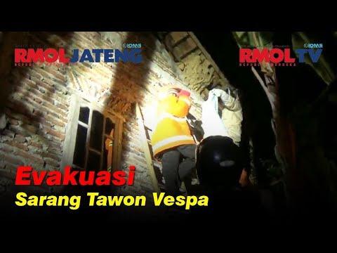 Detik-detik Petugas BPBD Demak Evakuasi Sarang Tawon Vespa