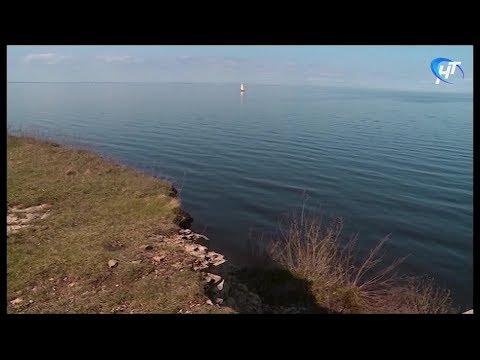 На озере Ильмень в районе деревни Козынево спасатели третий день ищут тело ребенка