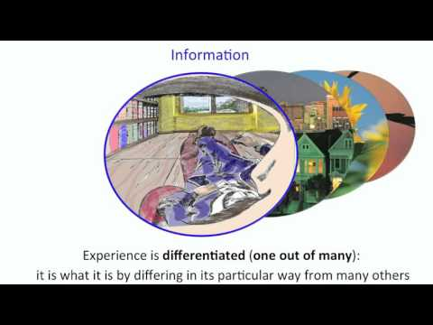 Download Integrated Information Theory   explained hd file 3gp hd mp4 download videos