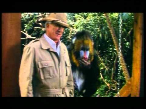 Mr Magoo - Trailer with sound re-edit