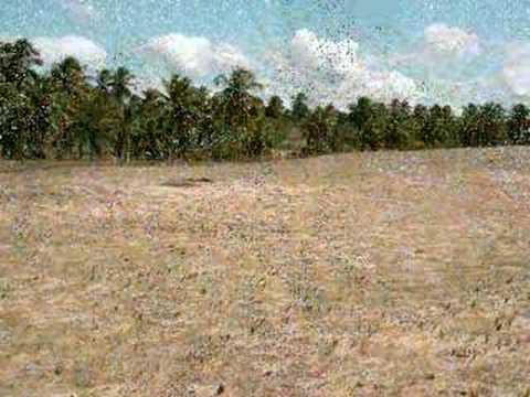 Terreno em São Miguel do Gostoso RN