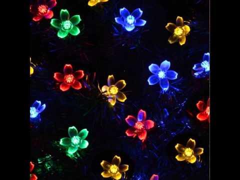 , title : 'Review: lederTEK Solar Fairy String Lights 21ft 50 LED Multi-color Blossom Decorative'