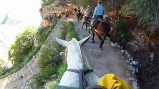 Overnight mule trip to Phantom Ranch at the bottom of the Grand Canyon. We went down on Bright Angle Trail on the South Rim, ...
