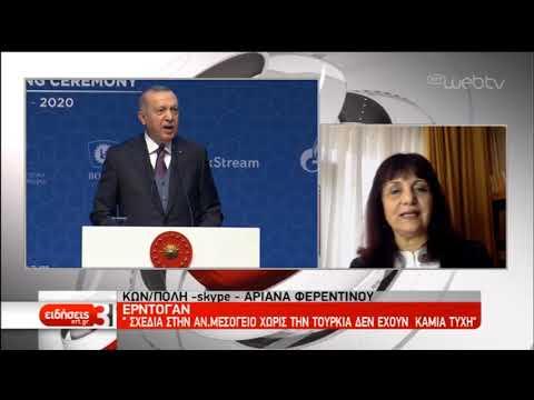 Πούτιν και Ερντογάν εγκαινίασαν τον αγωγό Turkish Stream | 08/01/2020 | ΕΡΤ