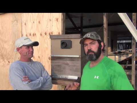 Honey Bees Removed From Raised Camp Style Home