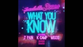 T-Pain ft. K Camp ft. Migos - What You Know [New 2014] (HQ)