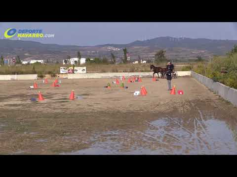 Campeonato navarro de enganches Olite 2017 1