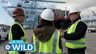 Download Video Behind The Digitization Of Shipping Logistics - In The Wild - GE MP3 3GP MP4