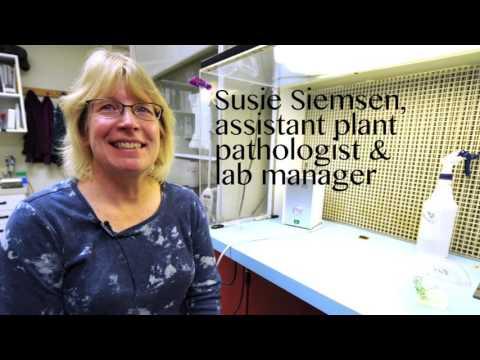 eSpudman May Industry Spotlight: Spudwoman:Susie Siemsen