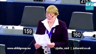 The Time Lords should take the lead again - Julia Reid MEP