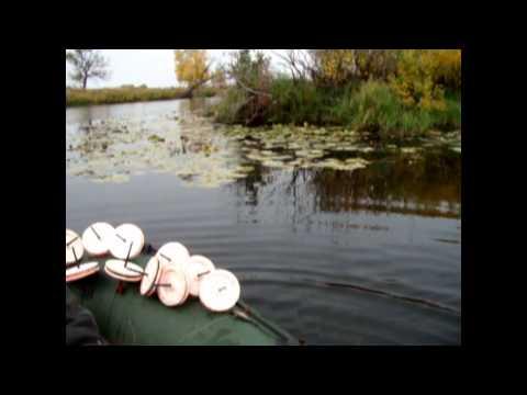 ловля на кружки поздней осенью