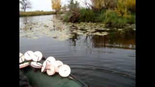 рыбалка осенью на  кружки