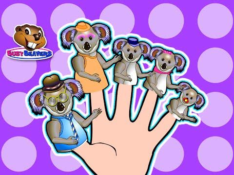 Finger Family Koalas   Teach English to Children, Fun Learning Song, Kindergarten Daycare Video