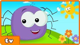Video Incy Wincy Spider | Itsy Bitsy Spider | Plus Lots More Popular Nursery Rhymes By Hooplakidz TV MP3, 3GP, MP4, WEBM, AVI, FLV Juli 2018