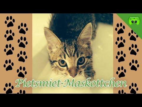 Pietsmiet-Maskottchen #1 Sammy
