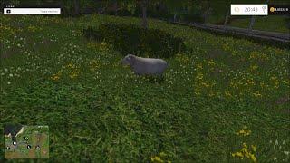 Farming Simulator 2015 - How To Farm Sheep Guide