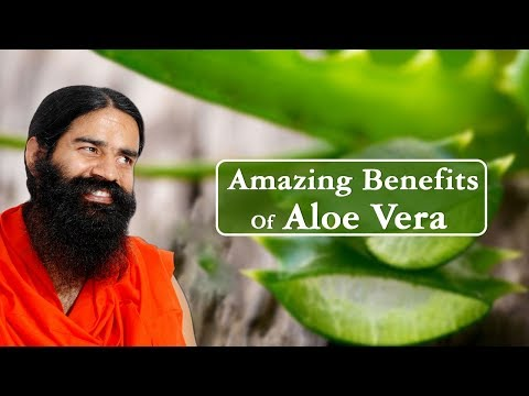 Amazing Benefits Of Aloe Vera (Ghritkumari) For Skin, Hair & Health