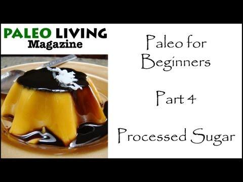 Paleo Diet for Beginners – 4 – Processed Sugar