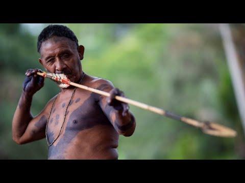 Indigene Brasilianer fürchten um ihr Land - versuchte L ...
