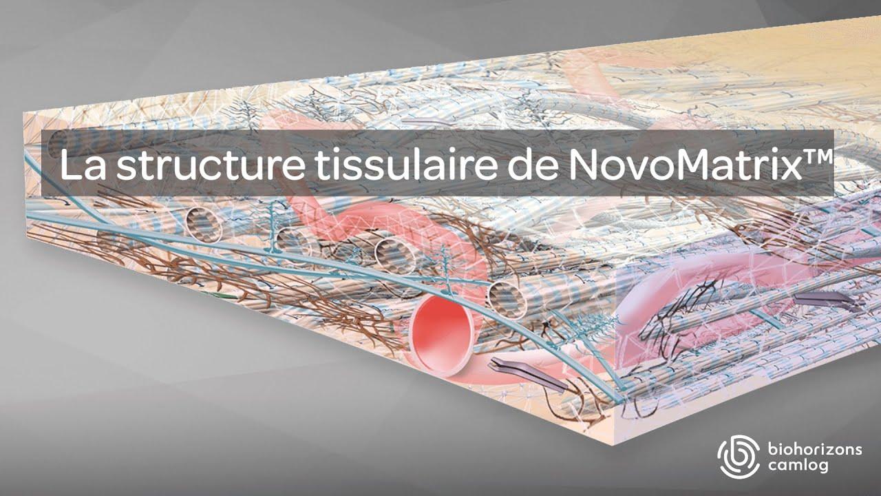 NovoMatrix™– la structure tissulaire