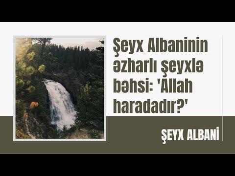 Şeyx Albaninin əzharlı şeyxlə bəhsi: 'Allah haradadır?'