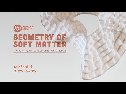 Geometrically Frustrated Mechanical Metamaterials - Yair Shokef