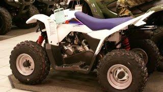 5. 2014 Suzuki QuadSport Z90