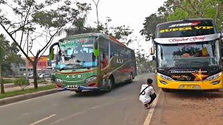 Video PEMAIN BARU LINTAS SUMATERA & JAWA ! Sempati Star Trayek Baru Jakarta - Palembang MP3, 3GP, MP4, WEBM, AVI, FLV Agustus 2018