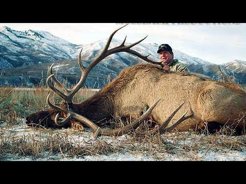 Statewide - Subscribe for new videos every Monday and Thursday: http://goo.gl/K1e8Q Ron Skoronski, the winning bidder of the 2003 statewide elk tag in Utah, hunts for se...