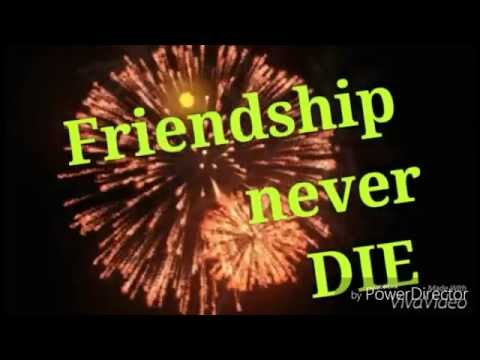 Video Friendship Never Die || heart touching telugu short film 2016 download in MP3, 3GP, MP4, WEBM, AVI, FLV January 2017