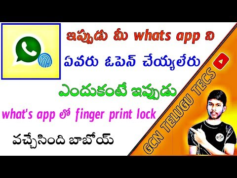 how to setup fingerprint lock sensor for what's app?    latest futures in what'sapp beta version .