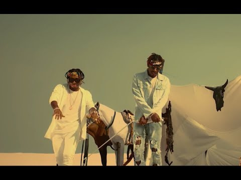 DOWNLOAD VIDEO: Sugarboy - Chop ft. Ycee