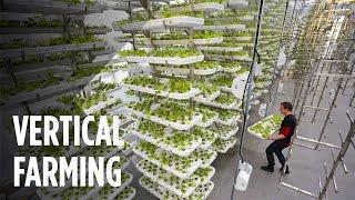 Fazenda vertical.. Veja como será as fazendas do futuro!!!