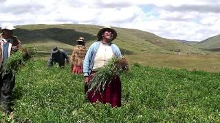 2014年世界粮食日:家庭农业