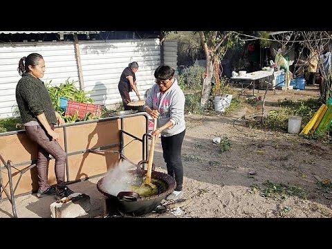Αβέβαιοι οι Μεξικανοί εντός και εκτός της χώρας μετά την εκλογή Τραμπ